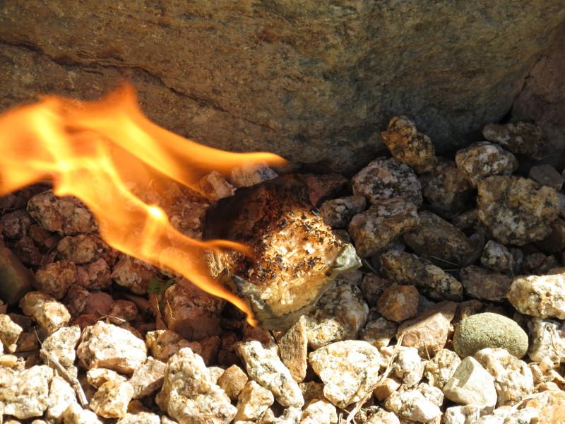 firestarters with egg cartons, sawdus