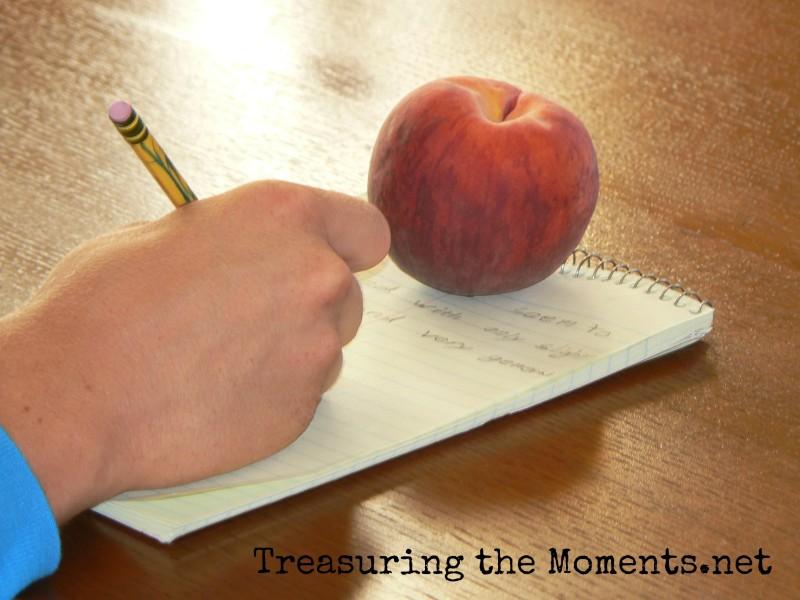 treasuringthemoments.net writing homeschool